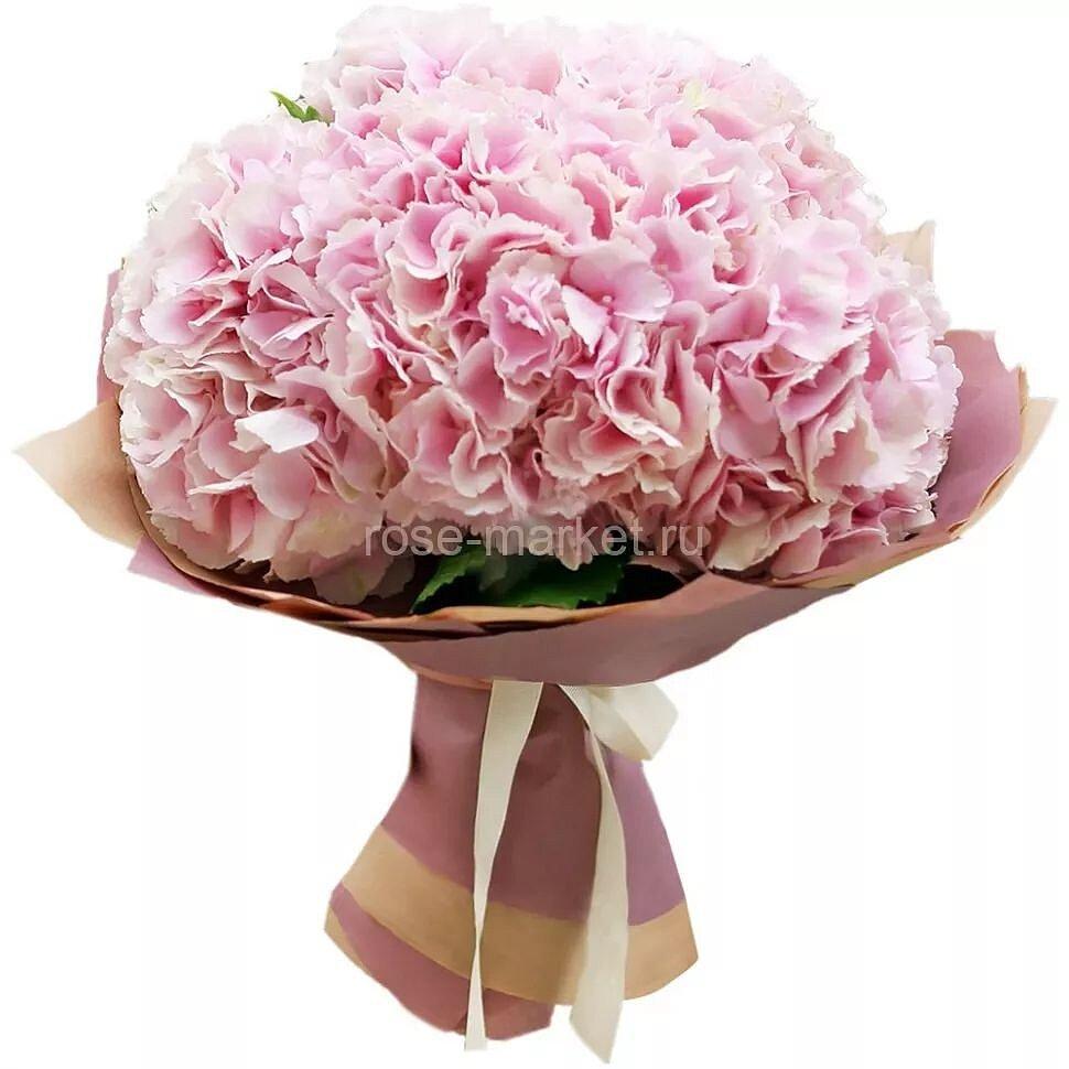 Букет из розовой гортензии