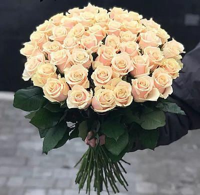 """Букет цветов """"Утренняя нежность"""", 51 роза"""